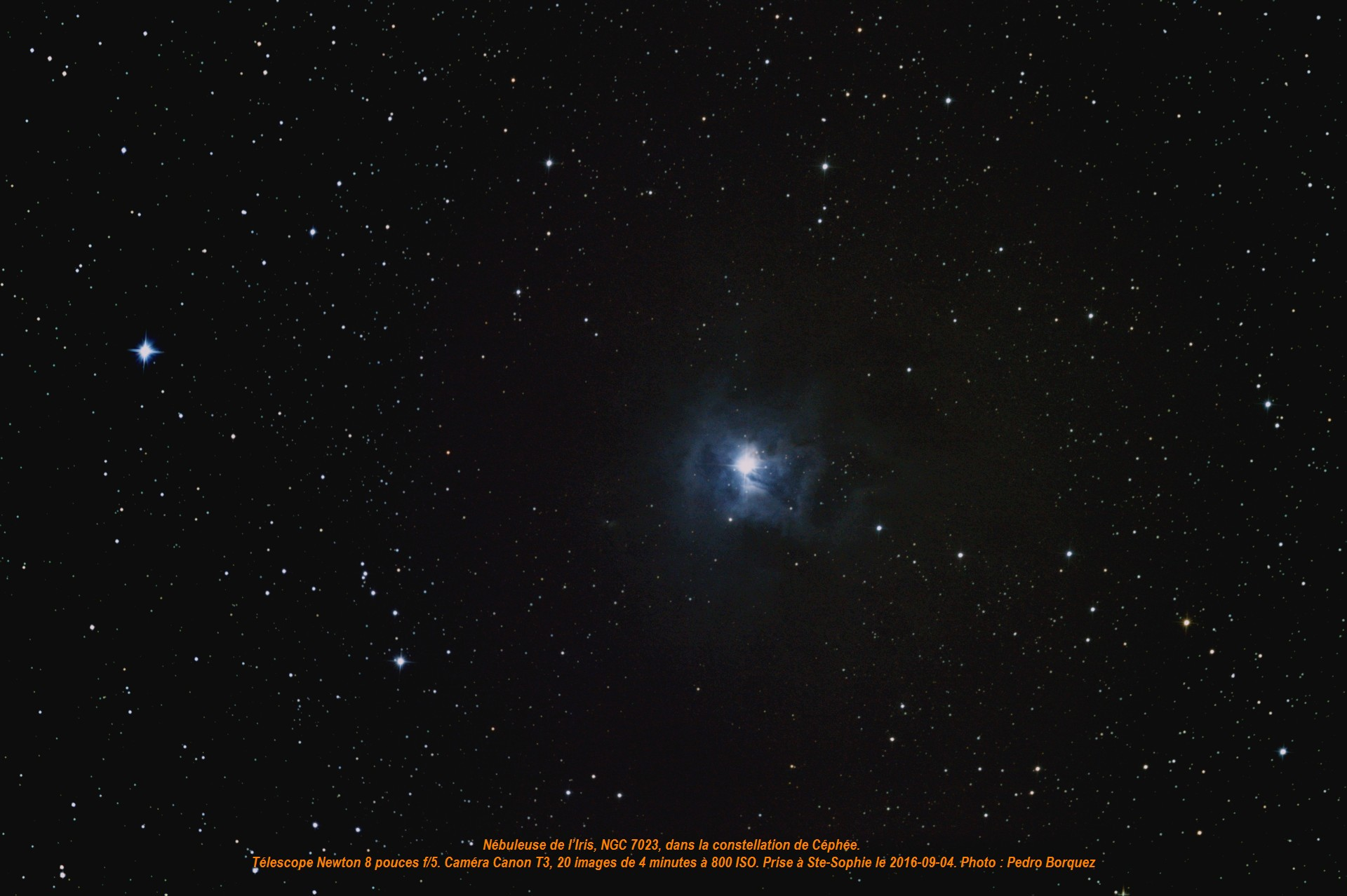 nebuleuse-ngc-7023redtex